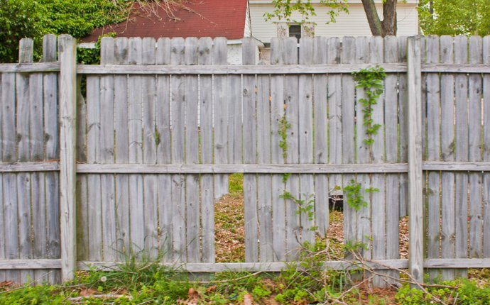 Wood fencing - when to repair or replace